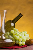 Wine jug Stock Photography