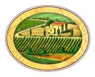 Wine label. Beautiful vineyards landscape in an elliptical label.Digital illustration Stock Image