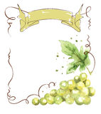 Wine label with a bunch of grapes and ribbon Royalty Free Stock Image