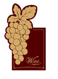Wine label - gold vine Royalty Free Stock Photo