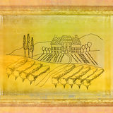 Wine label - hand drawn vineyard Royalty Free Stock Photo