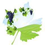 Wine leaf frame Royalty Free Stock Photos