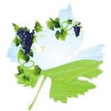 Wine Leaf Frame Royalty Free Stock Photos