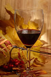 Wine and leaves Royalty Free Stock Image