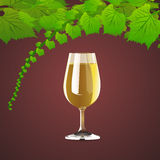 Wine and leaves of grapes Royalty Free Stock Photography