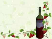 Wine list background. Wine bottle and vines, perfect for wine list Royalty Free Stock Photography