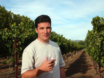 Wine maker. Young man standing at vineyard Royalty Free Stock Images