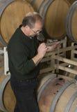 Wine Maker. Wine master inspecting sample taken from barrel Stock Photography