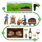 Wine making process vector illustration