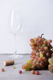 Wine making supplies, fresh grape with wine glass. Light background, copy space. Stock Photos