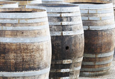 Wine manufacturing. Oak barrels for making great wines of Burgundy Royalty Free Stock Photography