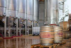 Wine manufacturing. Stock Photography
