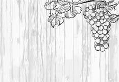 Wine menu background stock illustration