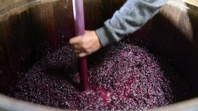 Wine mixing in barrel during fermentation process. Bordeaux Vineyard