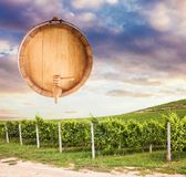 Wooden barrel over vineyard royalty free stock photos