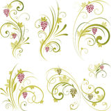 Wine motifs design. Wine scrolling design. Wine motif pattern Royalty Free Stock Photography