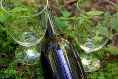 Wine And Nature. A bottle of wine with 2 glasses in a natural forest setting Royalty Free Stock Photo