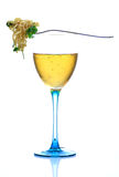 Wine and noodles royalty free stock photography