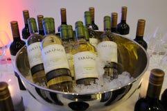 Wine och champagne Fotografering för Bildbyråer
