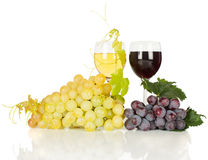 Wine och druva Fotografering för Bildbyråer