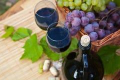 Wine och druvor Arkivfoton