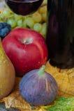 Wine och frukt Royaltyfri Fotografi