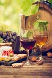 Wine och ost arkivbilder
