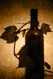 Wine in old style royalty free stock images
