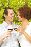 Wine in the park royalty free stock images