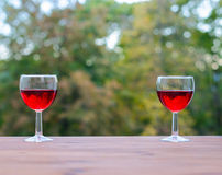 Wine party outdoors Two wine glasses Royalty Free Stock Photos