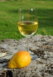 Wine and Pear Stock Image