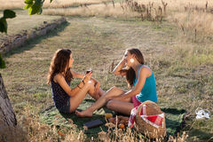 Wine and picnic Royalty Free Stock Image