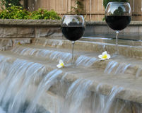Wine and Pool. Set for a staycation with wine and plumeria petals in the backyard pool and suana stock image