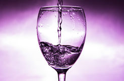 Wine is poured into a glass royalty free stock photography