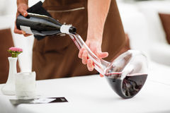 Wine pouring from the bottle into carafe. Sommelier pours red wine into a glass decanter Royalty Free Stock Images