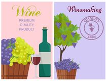 Wine of 100 Premium Quality Promotional Poster. With bottle, full glass, wooden basket of grapes and tree with fruits vector illustrations Stock Image
