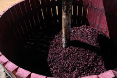 Wine press with red grape pomace Royalty Free Stock Photos