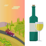 Wine Production Banner. Poster for White Vine. Stock Photography