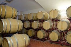 Wine Production. A modern wine cellar with barrels Stock Photography