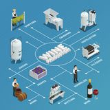 Wine Production Isometric Flowchart. Wine production process isometric flowchart with grapes crushing distillation filtering bottling juicing aging elements Stock Photography