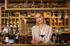 Attractive positive woman standing behind the bar counter stock photos