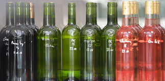 Wine quality control testing in laboratory. Bottles of wine, Wine quality control testing in modern laboratory Stock Images