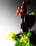 Wine red Stock Photos