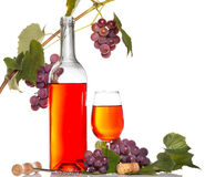 Wine with red grape branch Stock Photography
