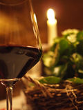 Wine and relax Royalty Free Stock Photography