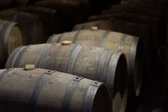 Wine ripening in barrels in a winery stock photos