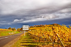 Wine Route Royalty Free Stock Photos