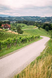 Wine Route in Southern Styria Royalty Free Stock Photography
