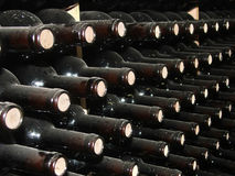 Wine Rows Stock Images