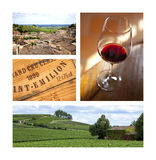 Wine and Saint-Emilion, France. Collage about Saint-Emilion village and vineyards stock photography